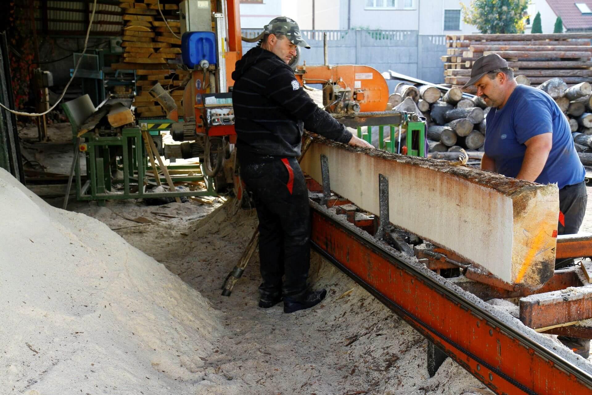 Pracownicy tartaku Dendron przy obróbce drewna